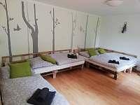 Ložnic / obýváček možnost pohovky nebo postele - apartmán k pronajmutí Dolni Dunajovice