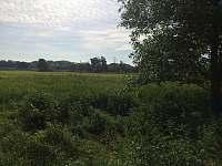v těsné blízkosti krásná louka, která vás dovede k řece Moravě