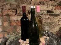 Vinný sklep - chata k pronájmu - 15 Prušánky - Nechory