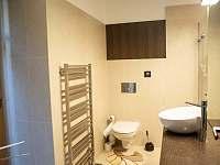 Koupelna přízemí - pronájem chalupy Vranov nad Dyjí