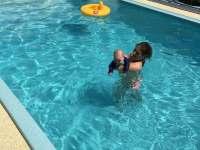 v bazénu - Provodov