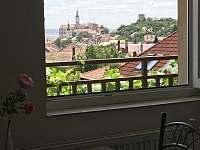 výhled z pokoje do zahrady