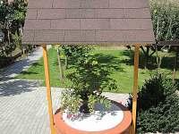 Čejkovice - rekreační dům k pronájmu - 4