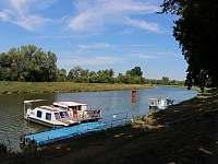 Řeka Morava II - chata k pronájmu Veselí nad Moravou