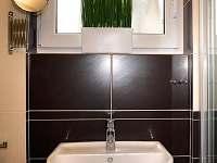 1.patro - koupelna - chata k pronájmu Všemina
