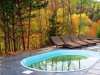 nový bazén s terasou - chata k pronájmu Všemina