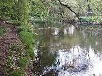 Řeka Svratka - pronájem chaty Březina