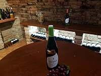 Víno - chalupa k pronájmu Prušánky - Nechory