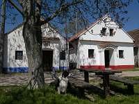 Dolní Bojanovice - chata k pronajmutí - 2