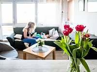 Obývací místnost - chata k pronájmu Břestek