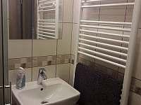 koupelna nového pokoje - rekreační dům k pronajmutí Hrušky