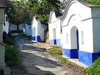 Vinné sklepy v Petrově - Plže