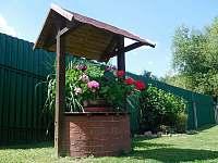 Zahrada - apartmán k pronájmu Plumlov