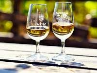 Vinný sklep Nechory - chalupa k pronajmutí - 8 Prušánky