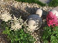 zahrada - Prušánky