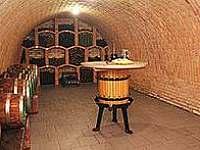 Vinný sklep Zimolka - penzion - 24 Mutěnice