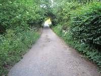Vstupní cesta na chatu