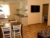 Bezbariérový apartmán s kuchyňským koutem, pokoj typu C - Osvětimany
