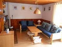 Obývací pokoj s krbem a TV