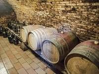 Vinný sklep - apartmán ubytování Nechory - 2