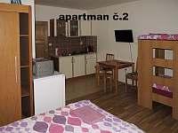 Klentnice - apartmán k pronajmutí - 8