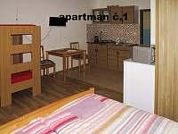 Klentnice - apartmán k pronajmutí - 11