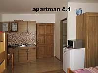 Klentnice - apartmán k pronajmutí - 12