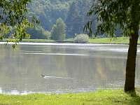 rybník Argalaška