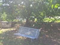Lavička pod meruňkou s výhledem na domek - chata k pronájmu Milovice