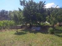 Posezení pod meruňkou - výhled na dvorek a dům - Milovice