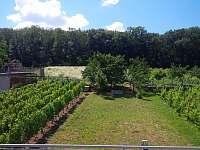 Výhled z terasy na zahradu - Milovice