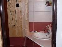 Koupelna - chata k pronájmu Nechory