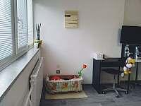 část hlavního pokoje a koš s hračkami