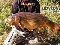 možnost rybaření - pronájem apartmánu Lanžhot