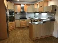 vlastní kuchyň - apartmán ubytování Uherský Ostroh - Kvačice