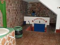 Vinný sklípek - chata ubytování Dolní Bojanovice - 5