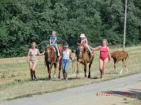 projížďky na koních - pronájem chatek Výrovice