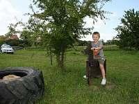 nejen děti si místo užijí! kůň je pevný, možná zvládne i větší děti :)