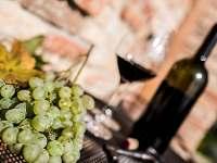 Víno - Vrbice