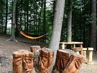 Lesní hřiště