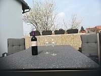 Dobré víno nikdy neurazí - pronájem apartmánu Ostrožská Nová Ves