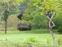 Kněždub - chata k pronájmu - 12