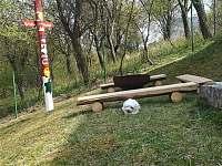 Chata k pronajmutí - chata ubytování Chvalatice - 5