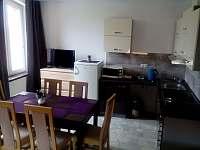 Apartmán č.2 - kuchyně - k pronájmu Vacenovice