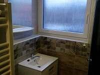 apartmán č.3 koupelna - Vacenovice