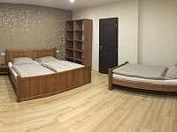 Apartmány Masarykova - apartmán k pronájmu - 6 Čejkovice