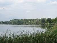 Místní rybník - chalupa k pronajmutí Strachotín