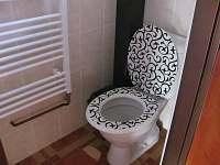 WC přízemí - chalupa k pronajmutí Strachotín