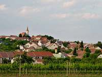 Obec Vrbice
