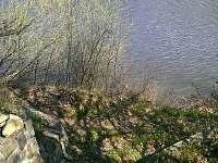 Oslnovice - Farářka - chata k pronájmu - 12